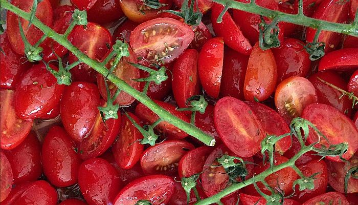 slome tomaten uit de oven recept
